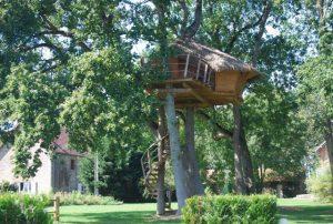 cabane dans les arbres logement insolite