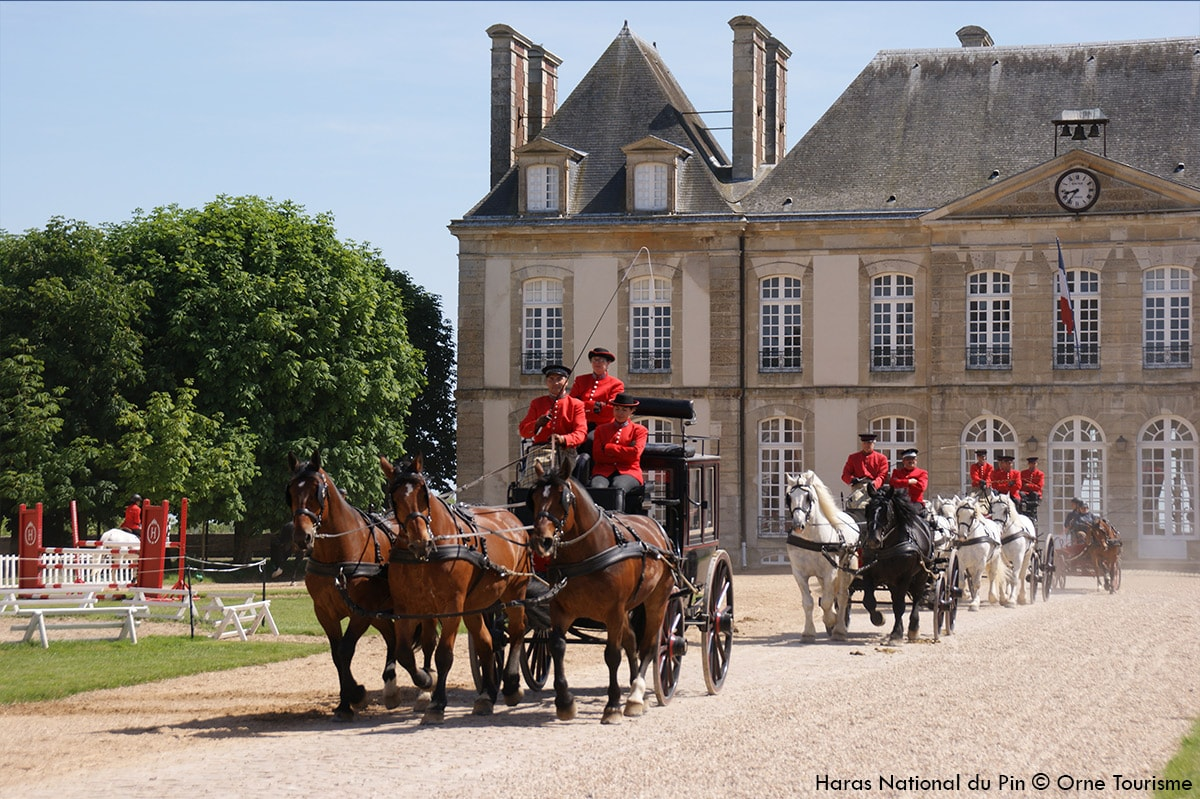 Haras_national_du_Pin_Orne_Normandie4-min