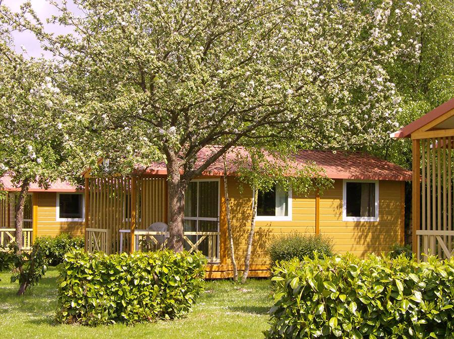 Camping la Roseraie d'Omaha - Mobil home