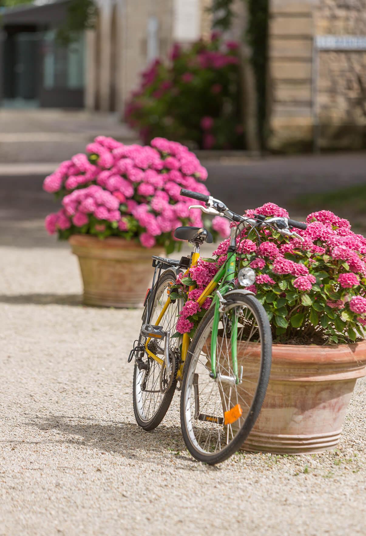 Accueil cyclotouristes en camping en Normandie
