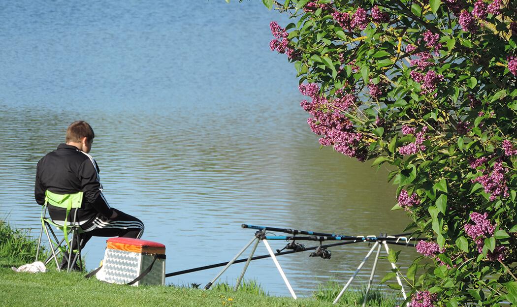 Campings avec étang de pêche en Normandie