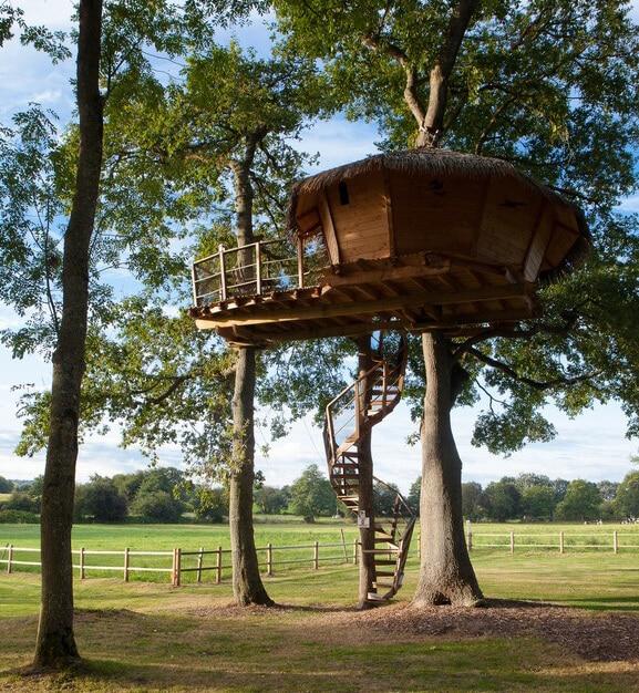 Chateau Lez Eaux 01 - Cabane dans les arbres